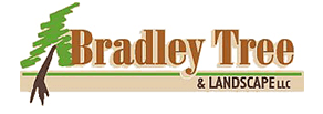 Bradley Tree and Landscaping