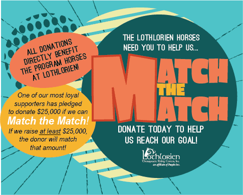 Lothlorien Therapeutic Riding Center Needs Your Help!